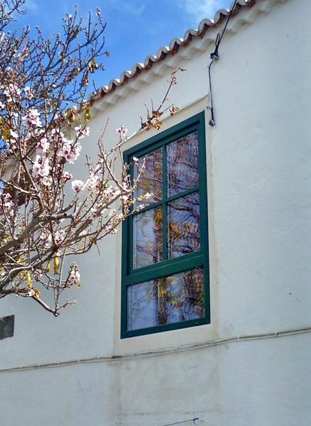 © ProCasa-Canarias.com  19
